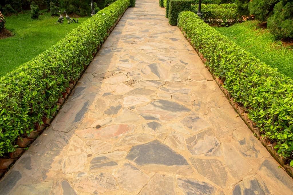 garden paving pee